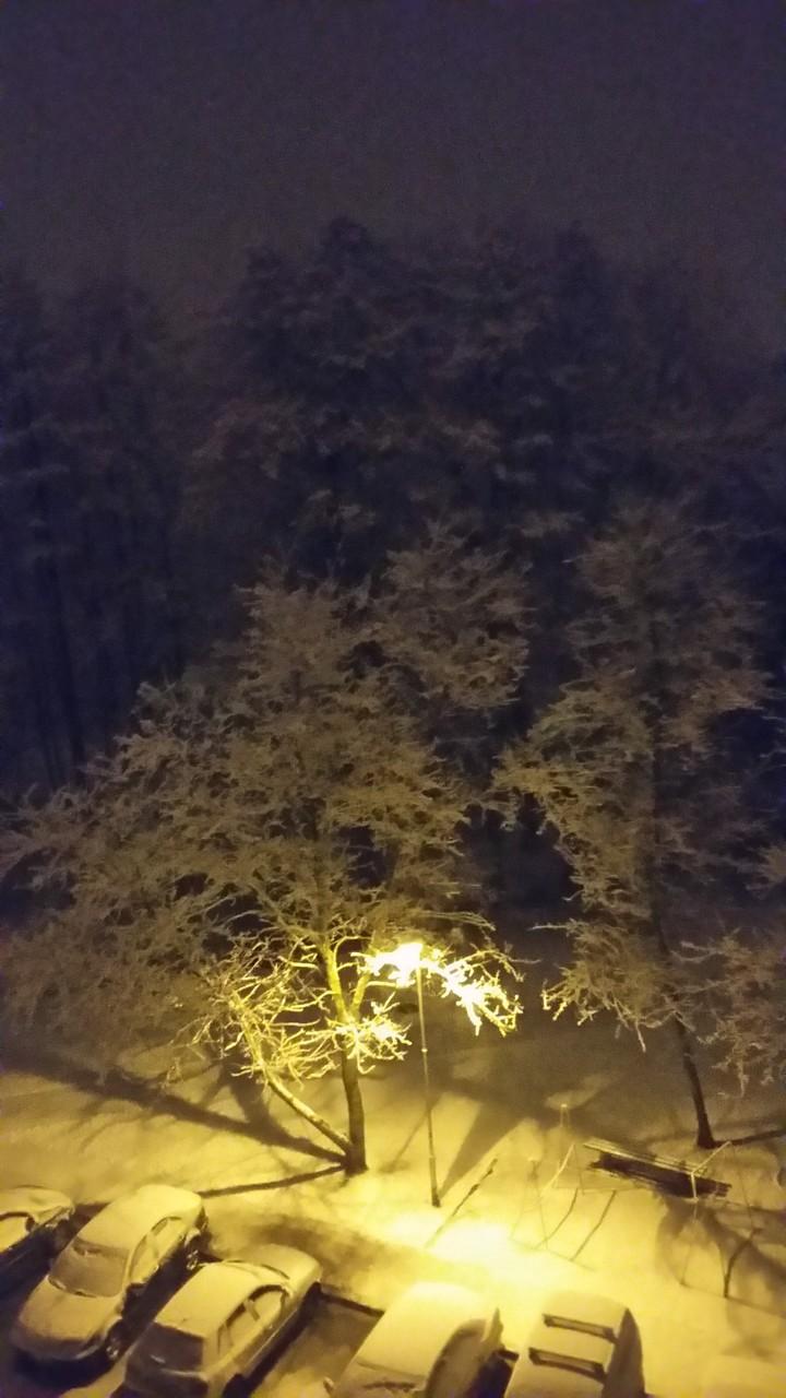 С. Данилина «...Хотите зимы?»