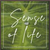 Sence of life SD oder CD    € 49,-