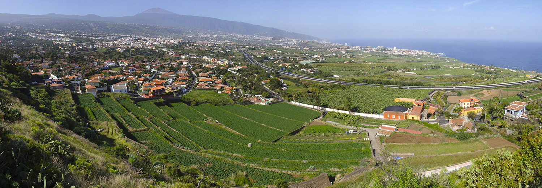Tenerife, mirador de Humbolt