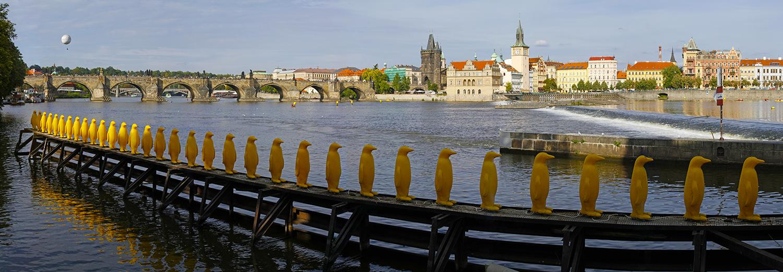 Prague, île Kampa (vue sur le pont Charles)