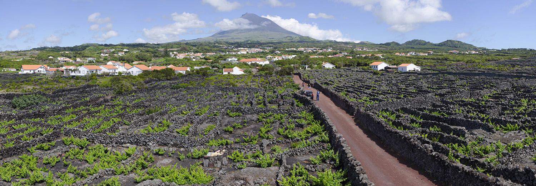 Açores, Pico