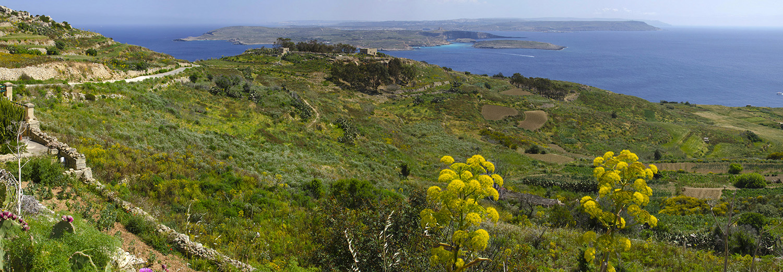 Île de Gozo, vue sur Comino