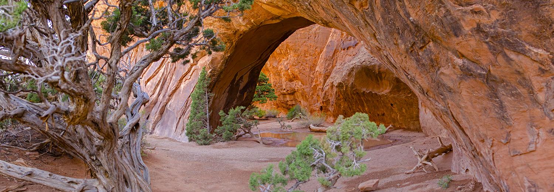 Arches N.P., Navajo Arch