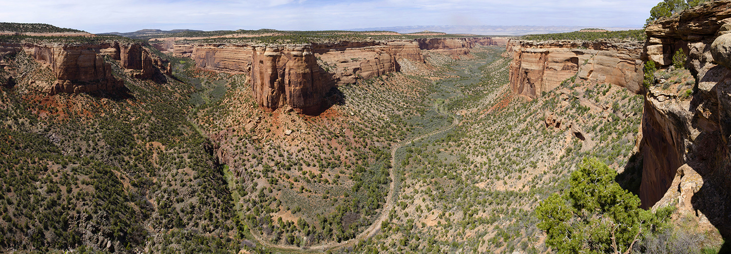 Colorado National Monument, Ute Canyon