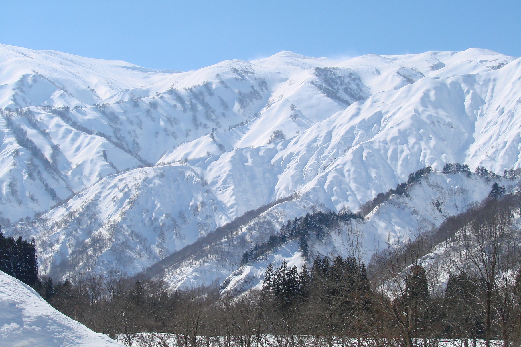 川入から見た地神山