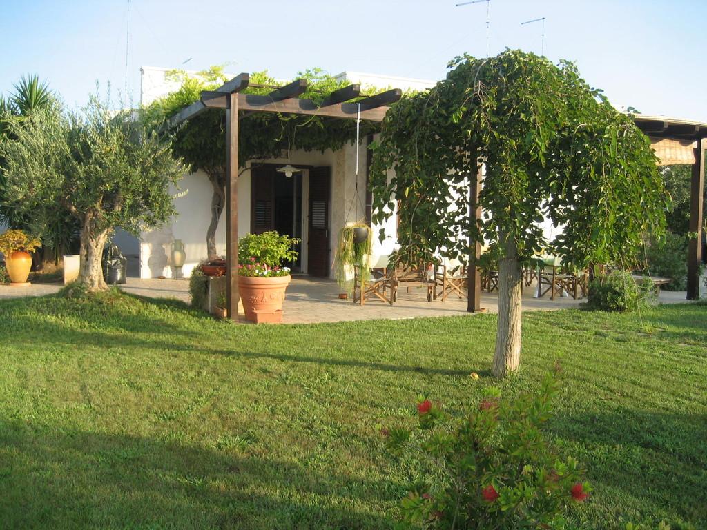 Villa - Pergola e Gelso pendulo