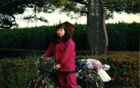 お宮の松 1998/01/04