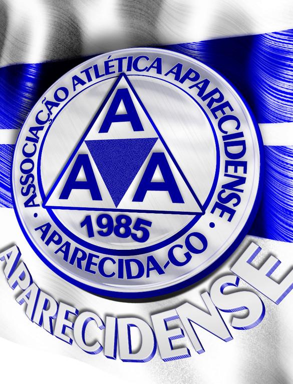 A.A.APARECIDENSE 2010 CAMPEAO DA DIV.DE ACESSO .