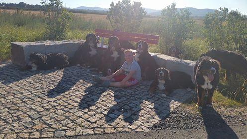 3 x T-Wurf vom Rummelsbach zu Besuch ;) mit 11 Bärchen unterwegs