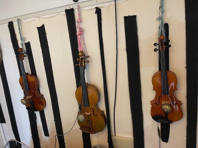 バイオリン&ビオラ ツィータ