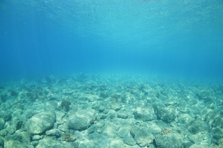 きれいな天草の海