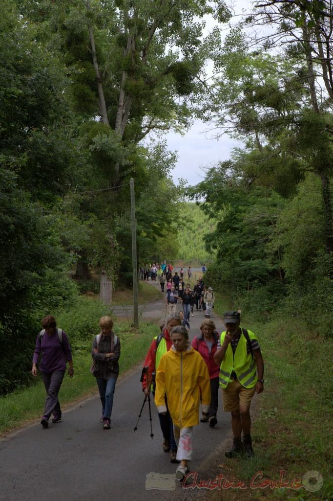 Festival JAZZ360 2015, randonnée pédestre, chemin de la Croix de Beylot, Camblanes-et-Meynac. 14/06/2015