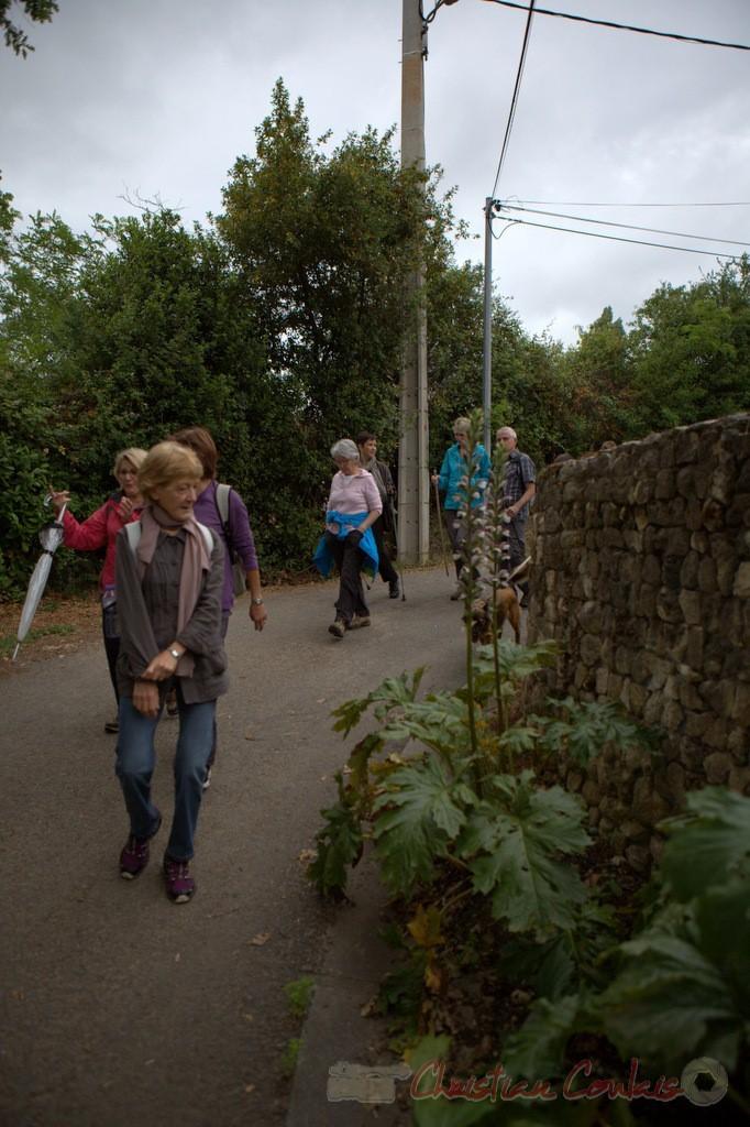 Festival JAZZ360 2015, randonnée pédestre, chemin du jonc, Camblanes-et-Meynac. 14/06/2015