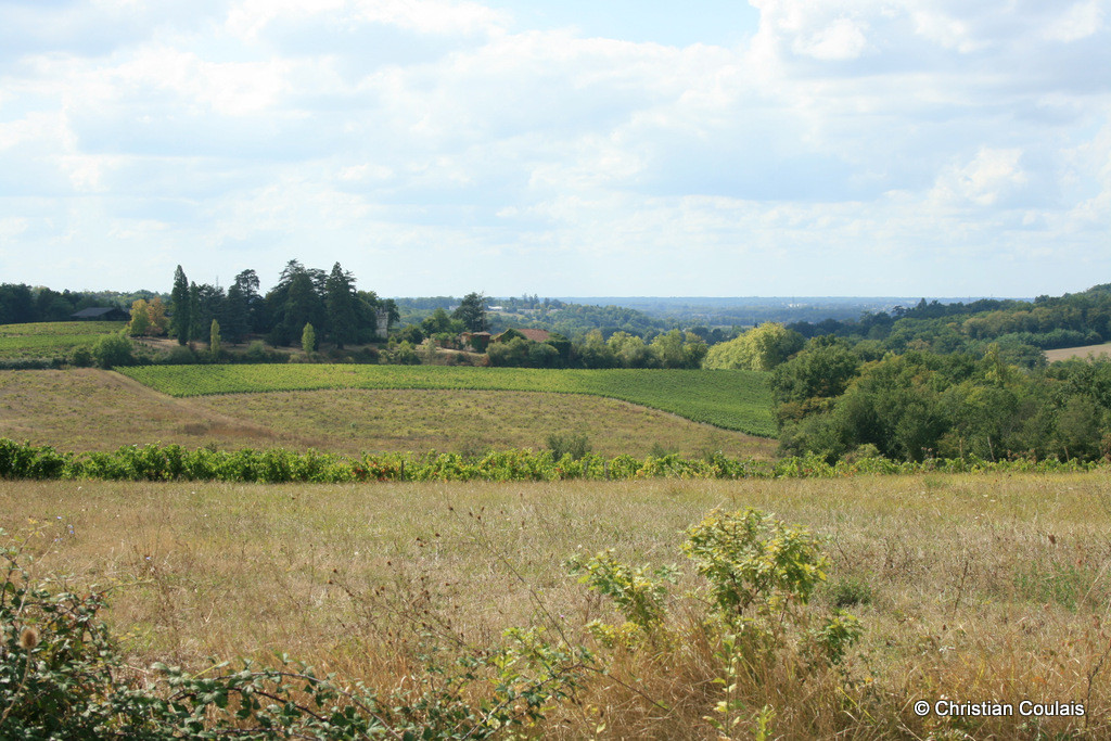 Point de vue et horizon sur Latresne et Bordeaux. Lieu-dit Graves, Cénac, Gironde