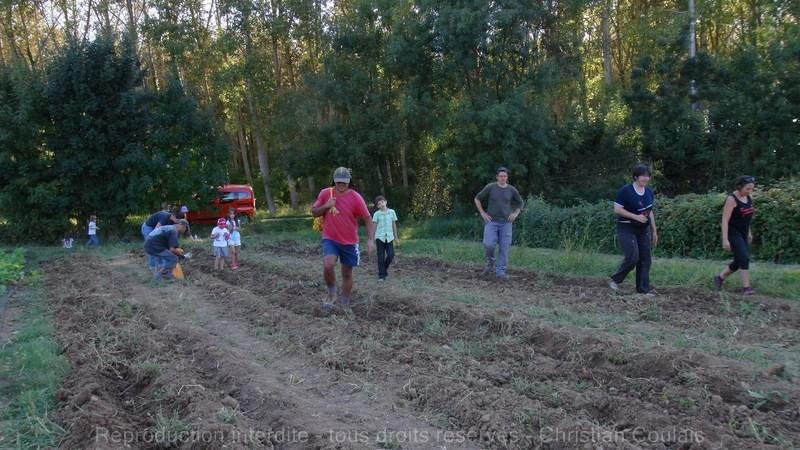 Le collectif Maraich à Baurech et Tabanac organise son chantier RamassPatate.