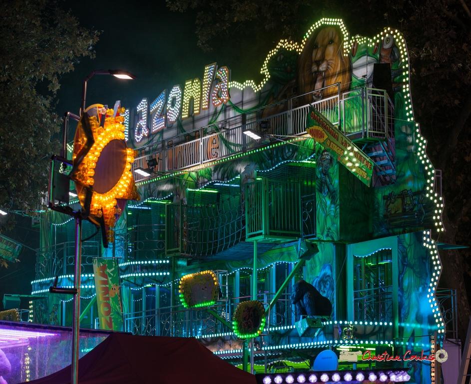 Jeu de néons VI. Foire aux plaisirs & attractions foraines, Bordeaux, mercredi 17 octobre 2018