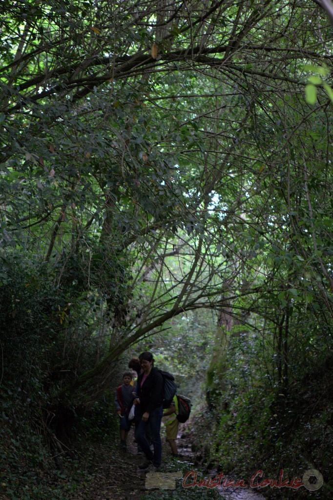 Festival JAZZ360 2015, randonnée pédrestre, chemin communal, Camblanes-et-Meynac