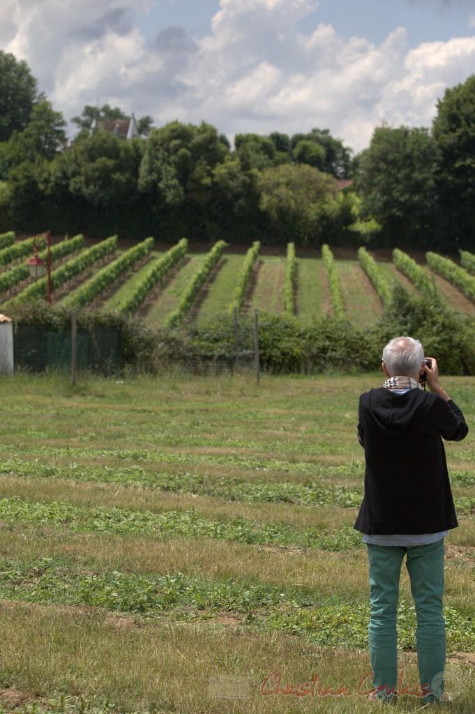 Festival JAZZ360 2015, Alain Pelletier, photographe d'action Jazz. Château Lestange, Quinsac. 14/06/2015