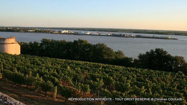 Le partage des eaux, entre Dordogne et Garonne. Vignobles des Côtes de Bourg