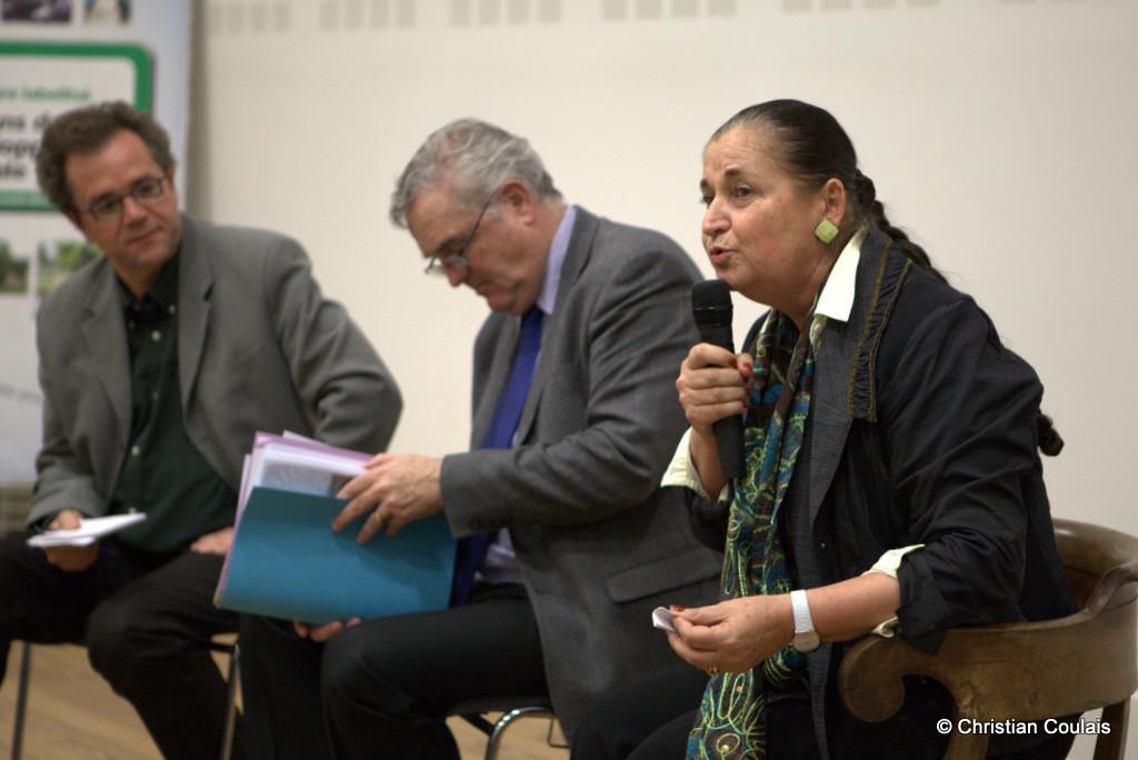 Conseil consultatif de Gironde Citoyenne, Martine Faure