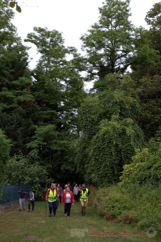 Festival JAZZ360 2015, randonnée pédestre, chemin départemental, Cénac