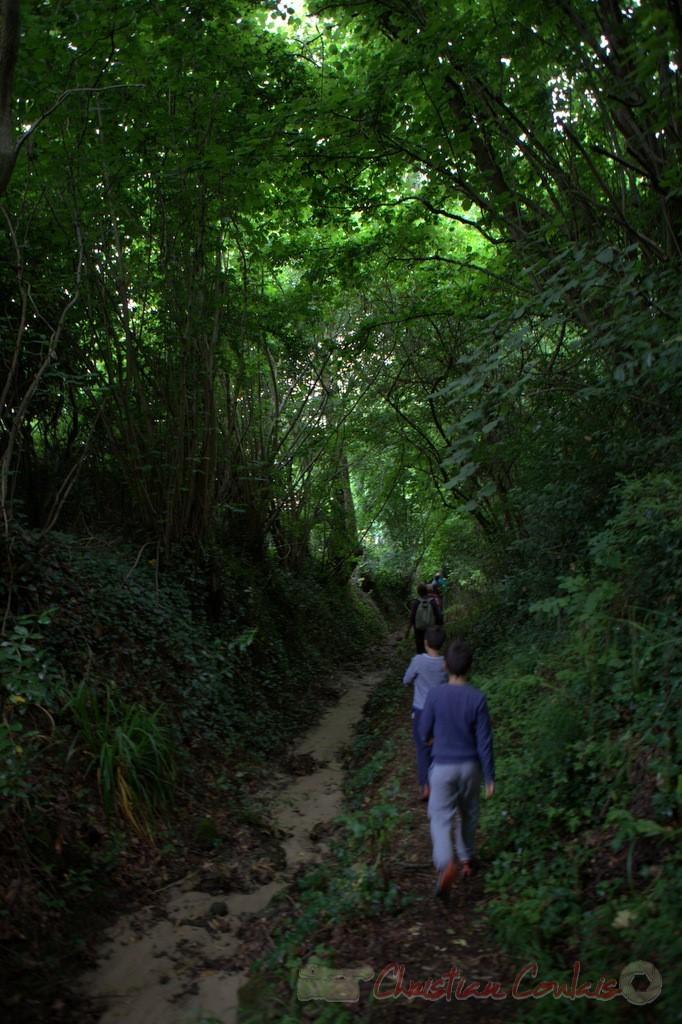 Festival JAZZ360 2015, randonnée pédestre, chemin communal, Camblanes-et-Meynac. 14/06/2015