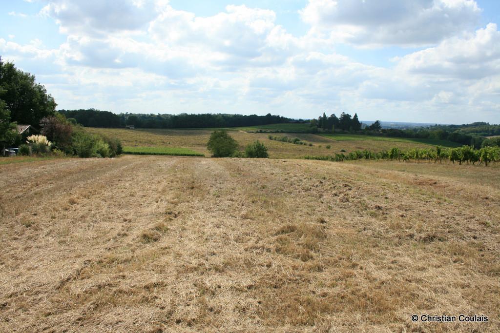 Point de vue et horizon sur Cénac bourg. Lieu-dit Graves, Cénac, Gironde