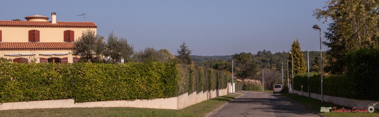 Très beau point de vue sur Carignan-de-Bordeaux et le château Léon dans l'axe. Avenue de Pujade, Cénac, Gironde. 16/10/2017