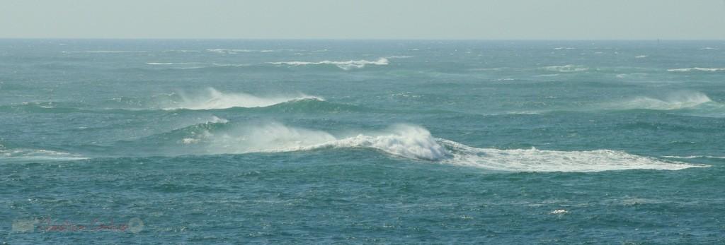 Océan, vagues. Petit-Nice de Pyla-sur-Mer, route de Biscarrosse, forêt domaniale de La Teste-de-Buch