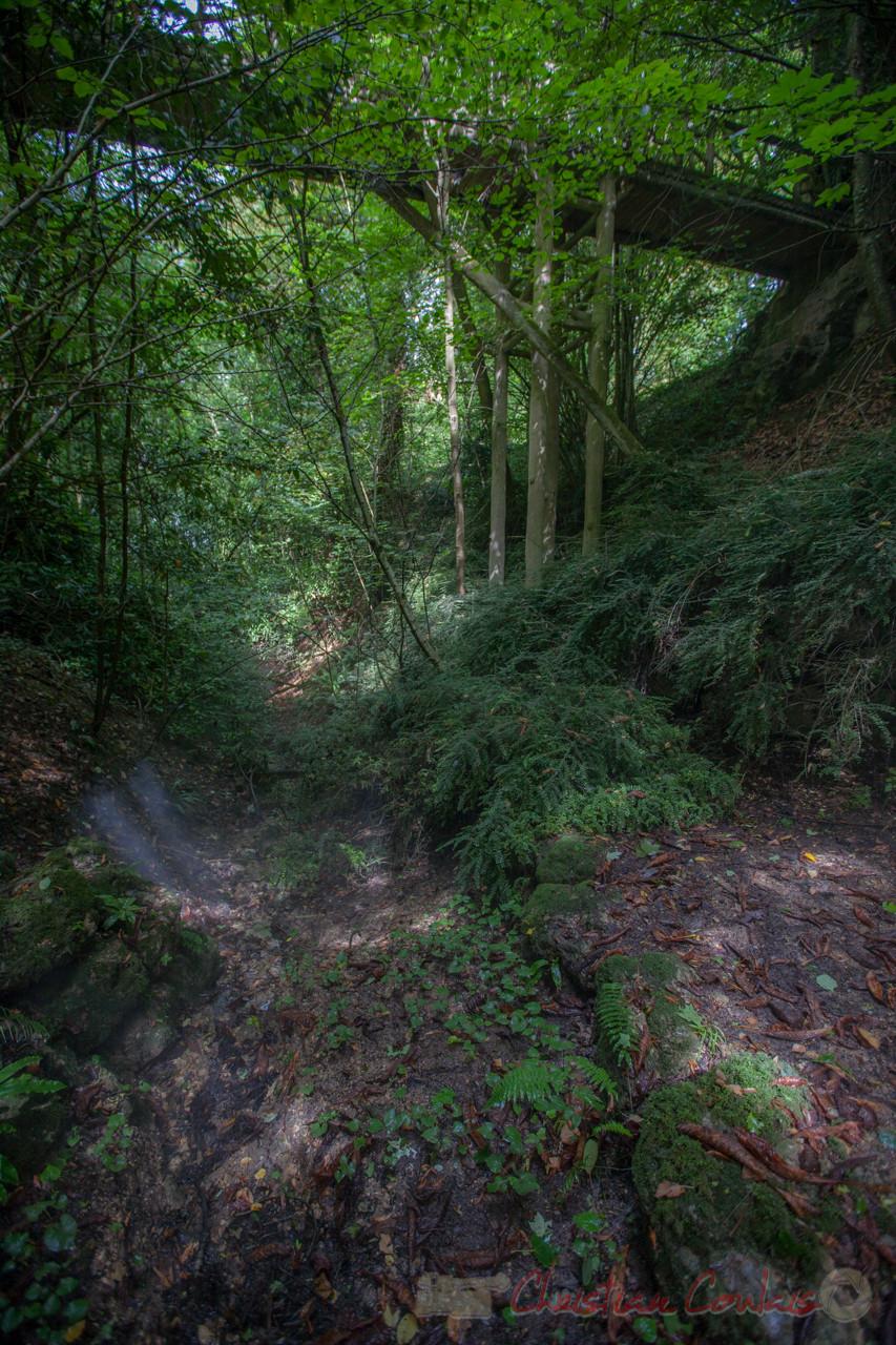 La Vallée des brumes, Domaine de Chaumont-sur-Loire, Loir-et-Cher, Région Centre-Val-de-Loire