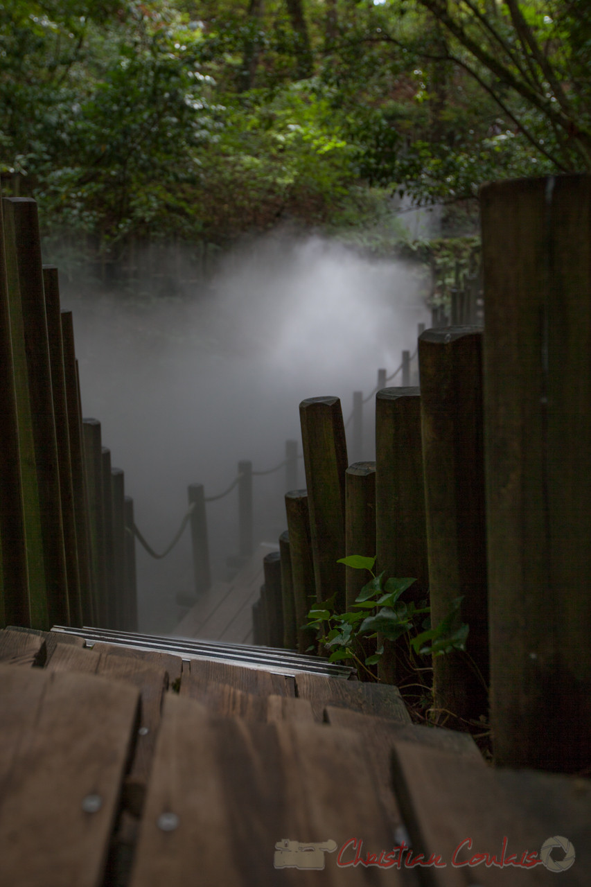 La Vallée des brumes, Domaine de Chaumont-sur-Loire, Loir-et-Cher, Région Centre-Val-de-Loire. Mercredi 26 août 2015. Photographie © Christian Coulais