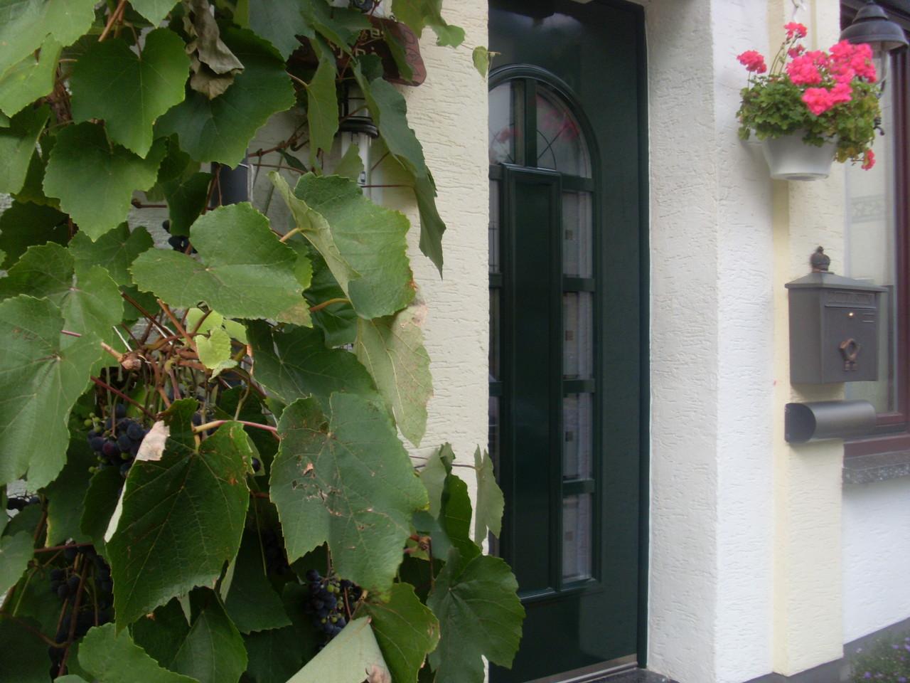Haustüre mit Traubenstock