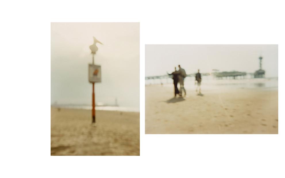 Am Strand, Pelikan | Am Strand, Scheveningen, 2004 | 2003