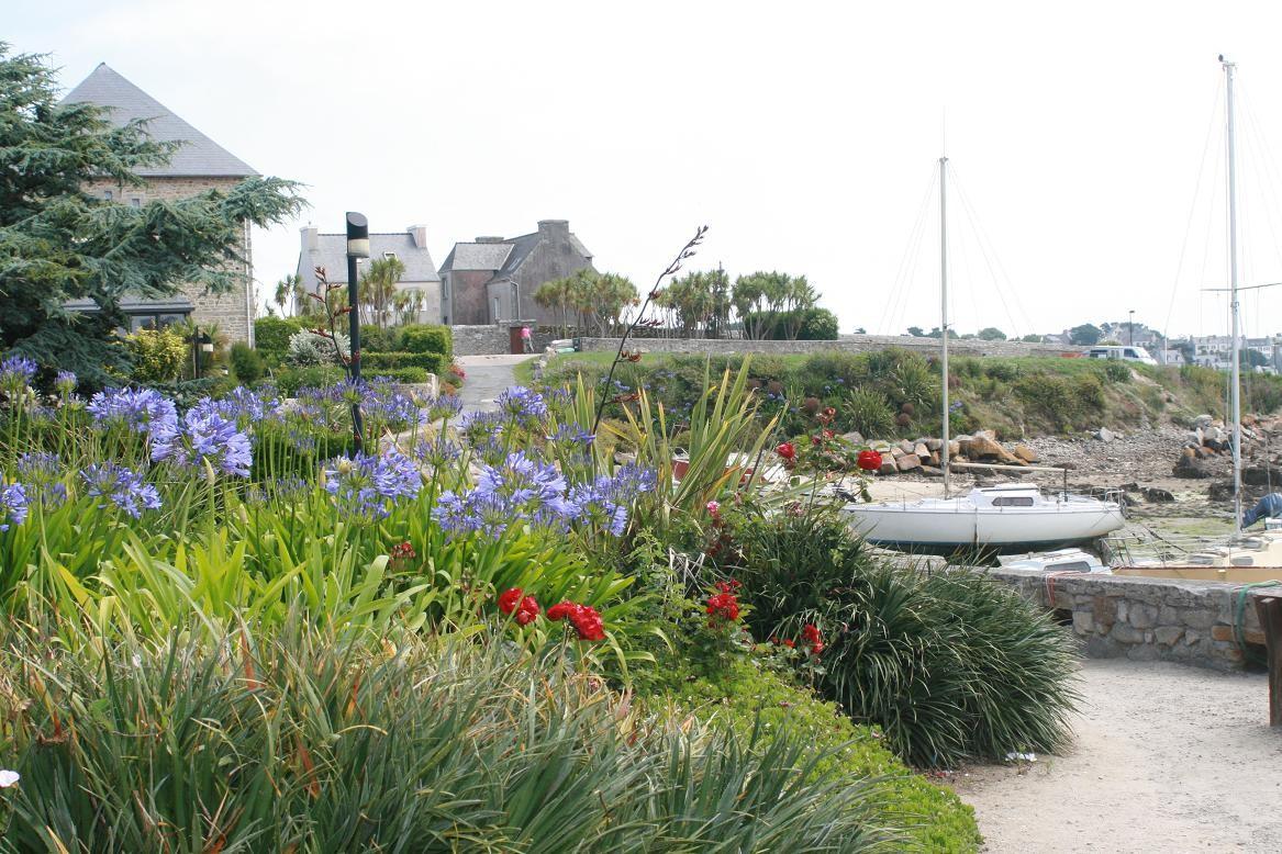 Le micro-climat de l'île de Batz favorise l'acclimatation de nombreuses plantes exotiques©moulindebeuzidou