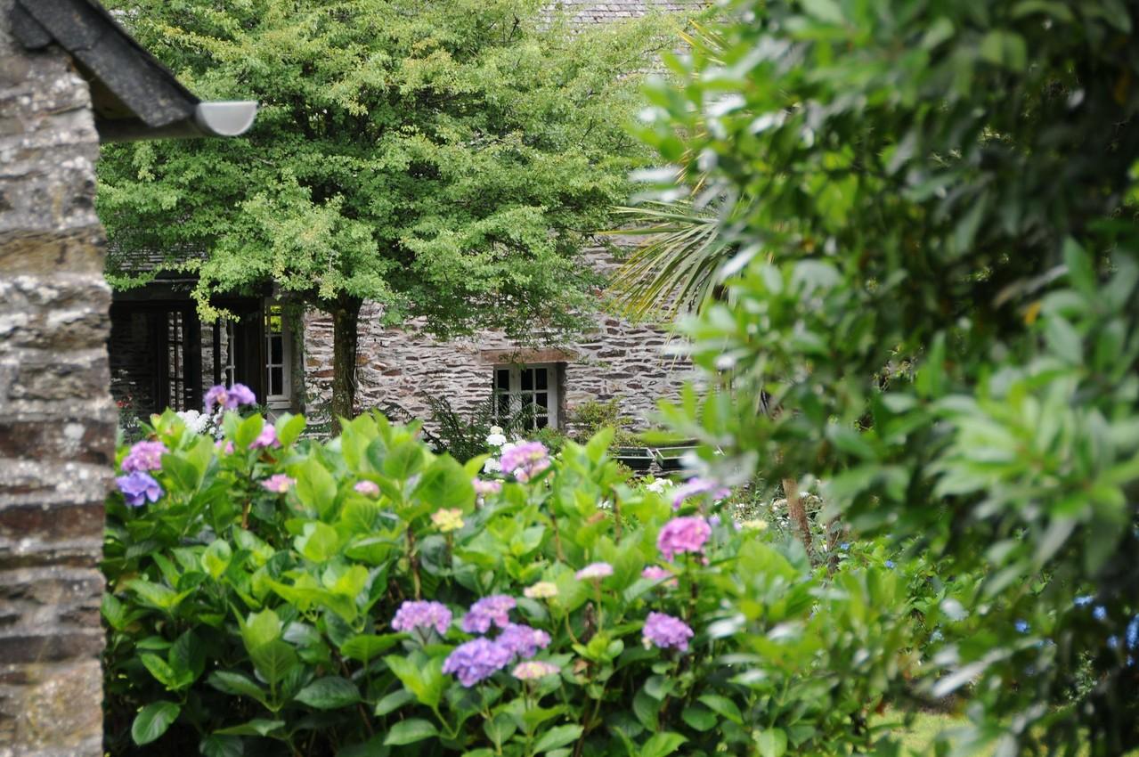 massifs d'hortensias ©moulindebeuzidou