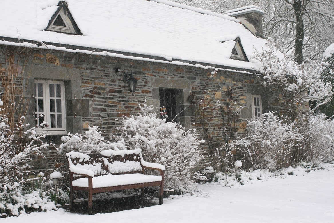 Le Martin-Pêcheur sous la neige©moulindebeuzidou