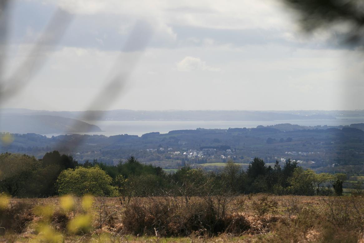 Le domaine de Menez Meur présente un concentré de paysages des Monts d'Arrée©moulindebeuzidou