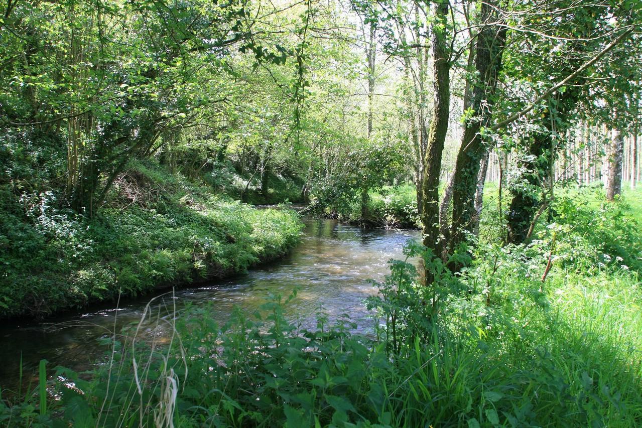 La rivière longe la propriété sur 800 mètres ©moulindebeuzidou
