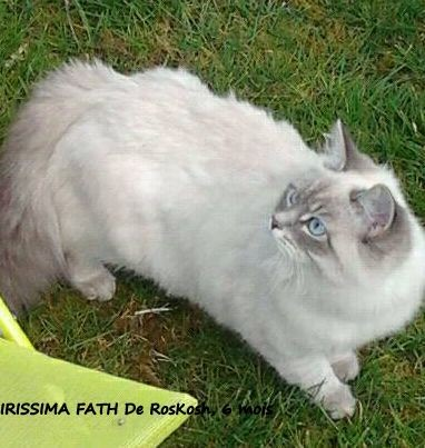 Merci à sa maman Marie-Gaëlle pour les photos, ses nouvelles: Irissima est splendide!