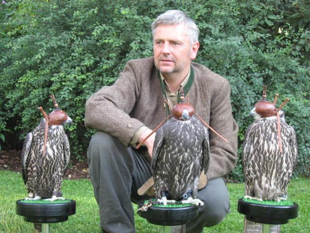 Bild: Falkenvorführungen und viele weitere praktische Bereiche der Jägerausbildung sind in unserem Jagdkursprogramm.