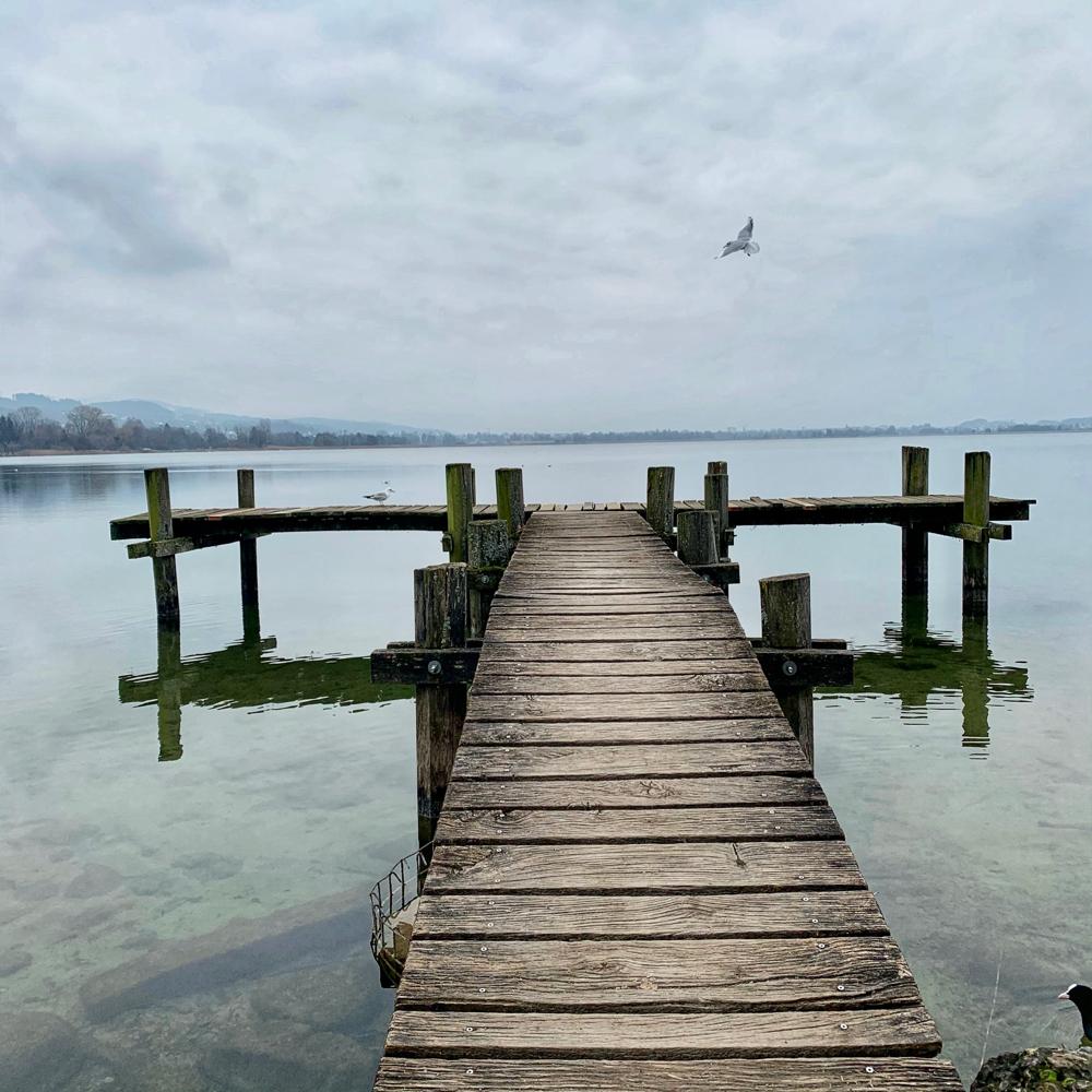 Ganzheitliche Praxis Sara Vercellone Blog Heilkoma für Hinterbliebene
