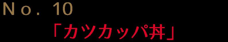 道の駅四万十大正 カツカッパ丼