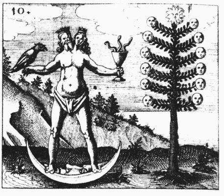 【完全解説】アンドロギュヌス「男性的な特徴と女性的な特徴を組み合わせた両性具有」