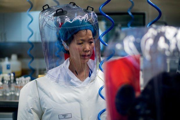 高い安全性(レベルBSL4)のラボに滞在中の石博士。彼女のコロナウイルス研究は、はるかに低い安全レベルのBSL2およびBSL3ラボで行われていた。