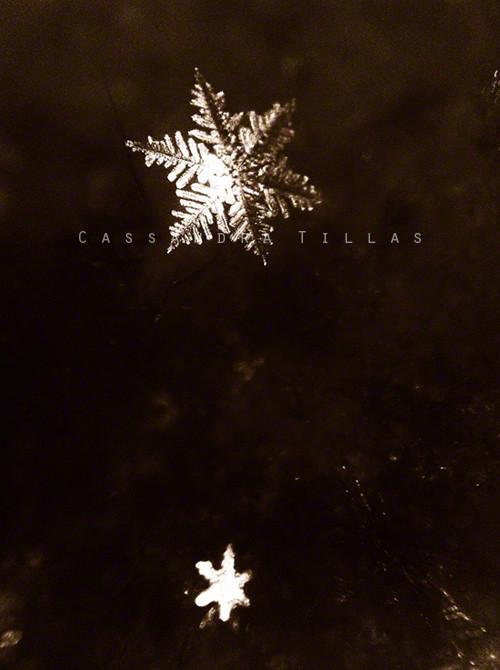 A Swiss snowflake.