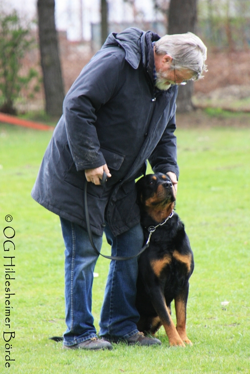 DANKE an Daniel Aßmann mit Pitt vom Hause Hohmann - Blindenhund