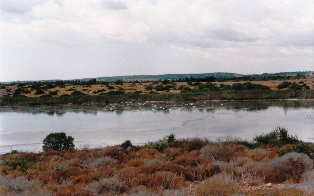 Riserva Naturale dio Vendicari