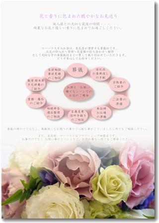 すみれ会:新パンフレット
