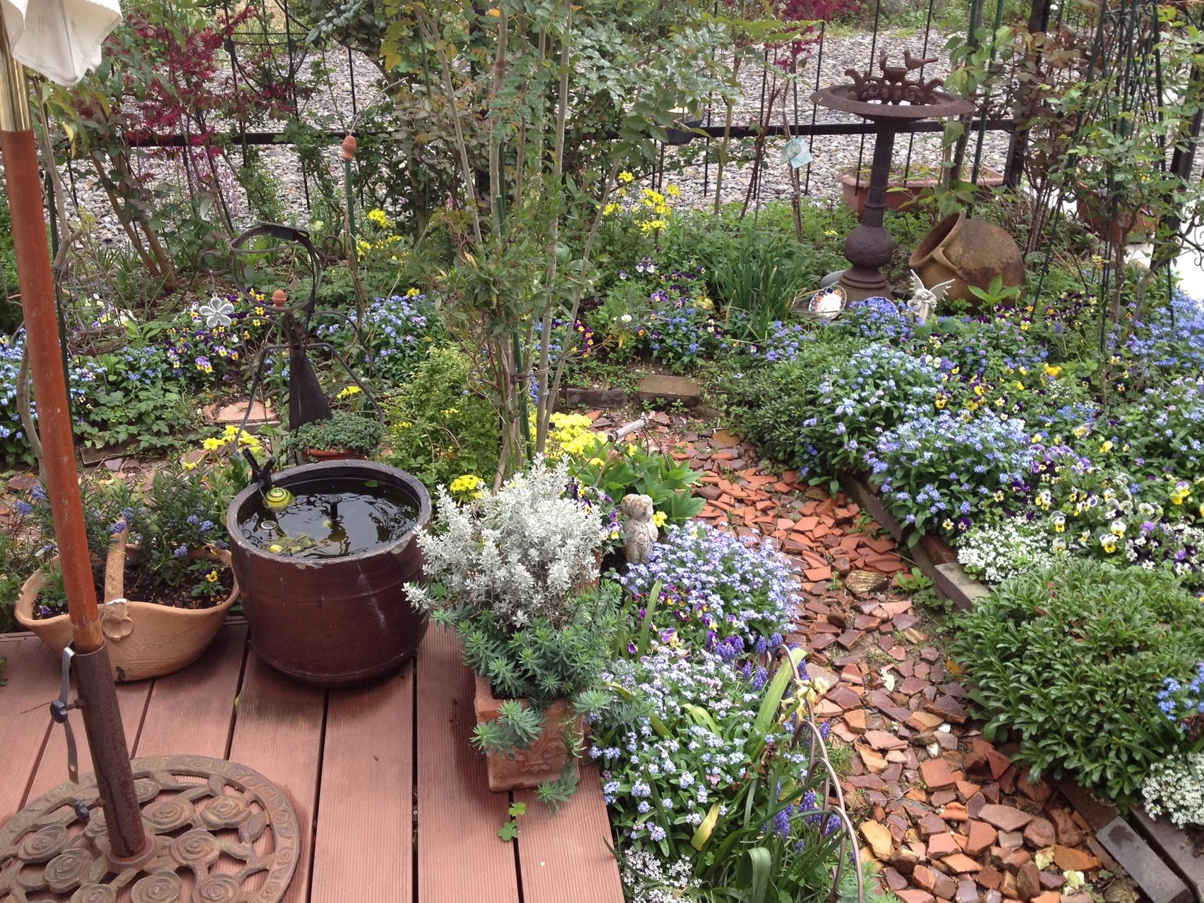 メイフェア・foresthill garden