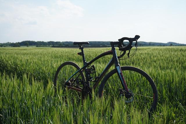 vélo neuf de course dans une rizière